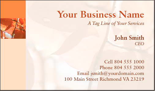 Business Card Design 430